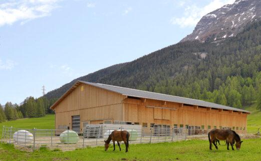 Einfamilienhaus und Laufstall La Punt GR